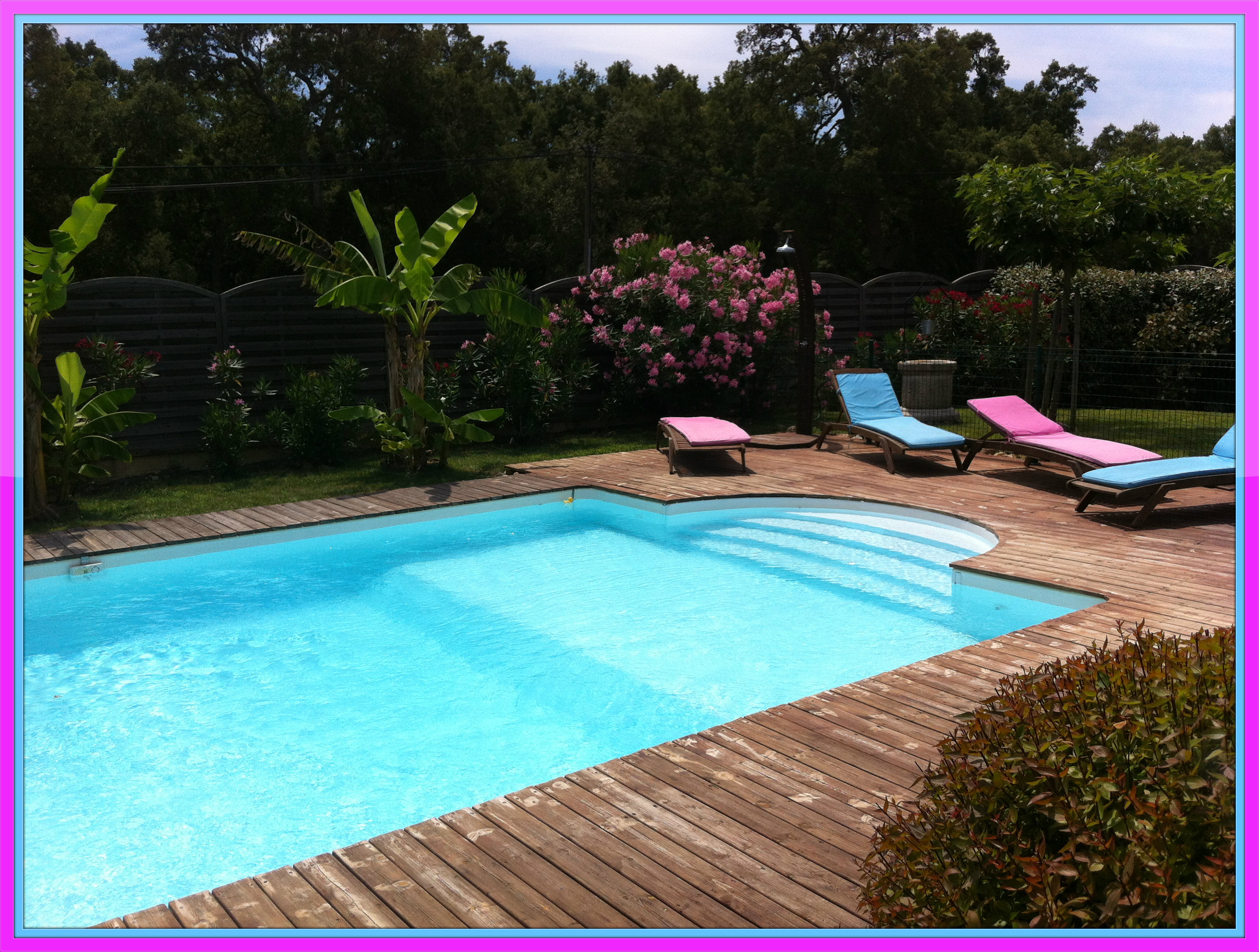 My Holidays In Corsica The Swimming Pool Of Our House Chair Family Photo 35191533 Fanpop