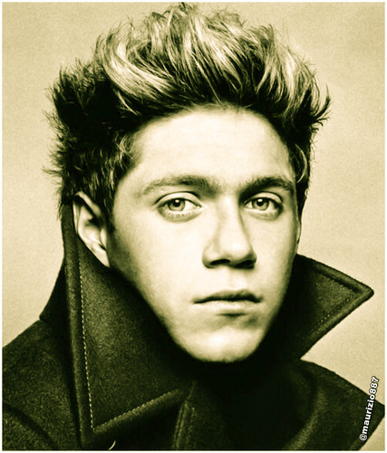 Niall Horan 2013