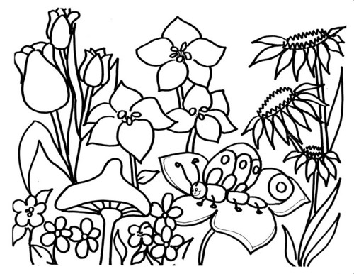 aleatório pages 4 colouring♥