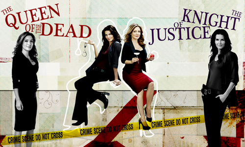 Rizzoli & Isles wallpaper possibly containing a hip boot and a well dressed person entitled Rizzoli & Isles wallpaper edits