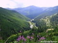 romania - Pasul Prislop carpathian mountains Romania most beautiful european landscapes wallpaper