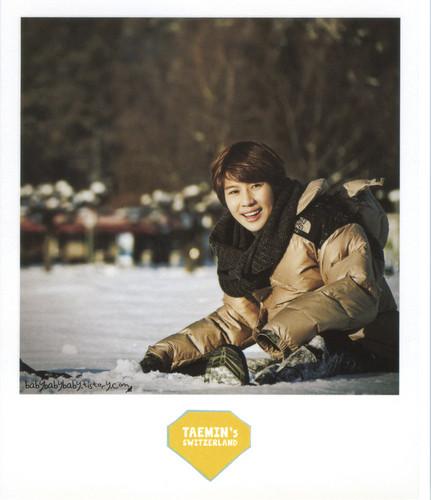 SHINee's Special Vacation Polaroid Sets