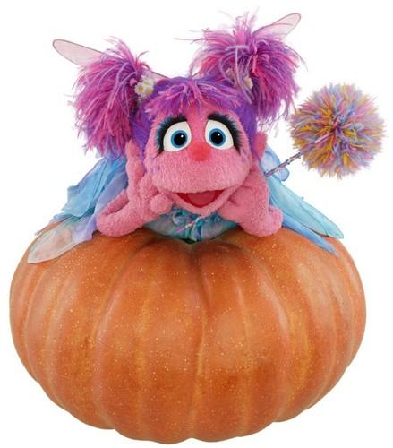 Sesame Street wallpaper containing an acorn squash, a pumpkin, and an acorn squash called Sesame Street ✿