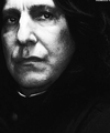Severus B&W - severus-snape photo