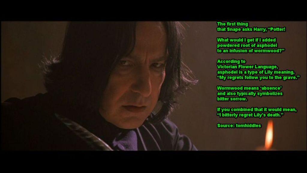 Severus-Reflects-on-Li...