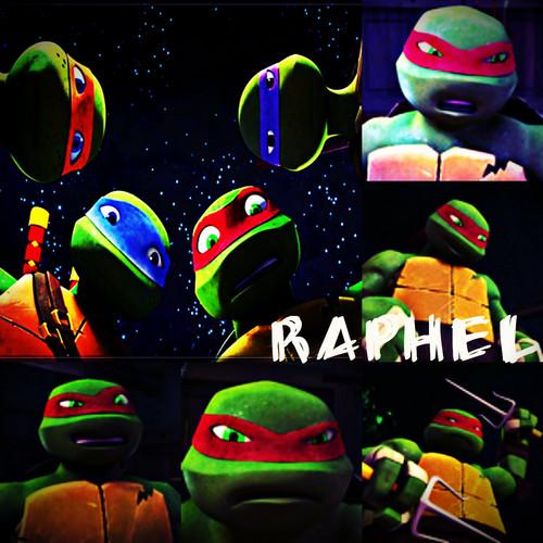 2012 Teenage Mutant Ninja Turtles wallpaper entitled TMNT