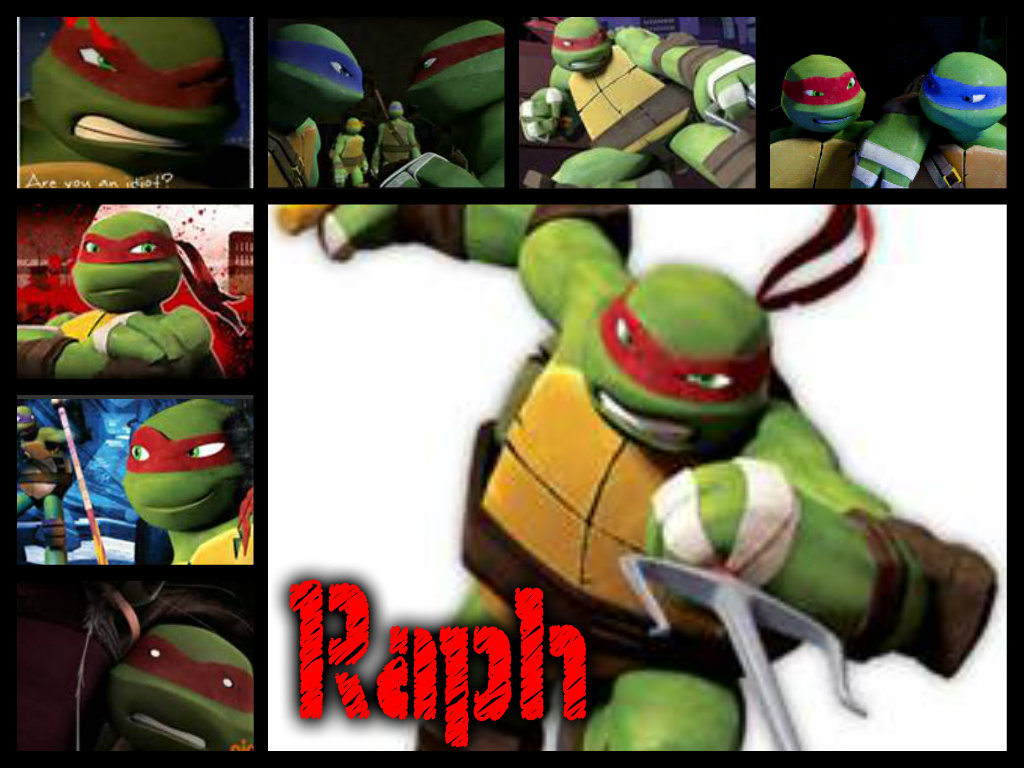 2012 Teenage Mutant Ninja Turtles TMNT ~