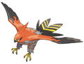 Talonflame  - pokemon-x-and-pokemon-y-version photo