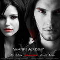 Vampire Academy by Richelle Mead - reading fan art