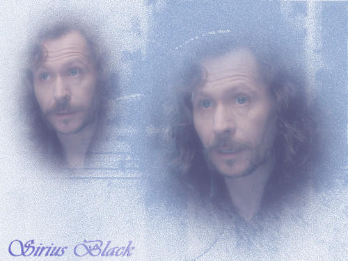 Sirius Black wallpaper possibly containing a portrait entitled WPSirius234.jpg