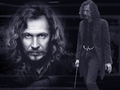 WPSirius254.jpg - sirius-black wallpaper