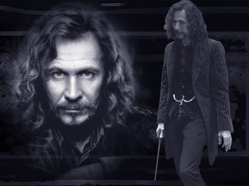Sirius Black images WPSirius254.jpg HD wallpaper and ...