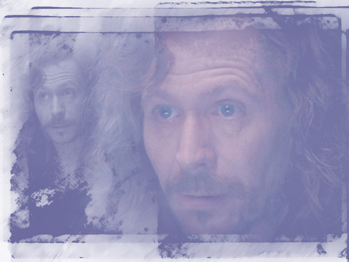 Sirius Black wallpaper possibly containing a sign called WPSirius267.jpg
