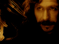 WPSirius368.jpg - sirius-black wallpaper