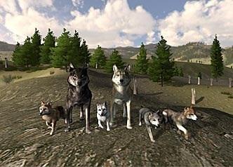 WolfQuest 2.5 image
