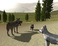 Wolves and Pups - wolfquest photo