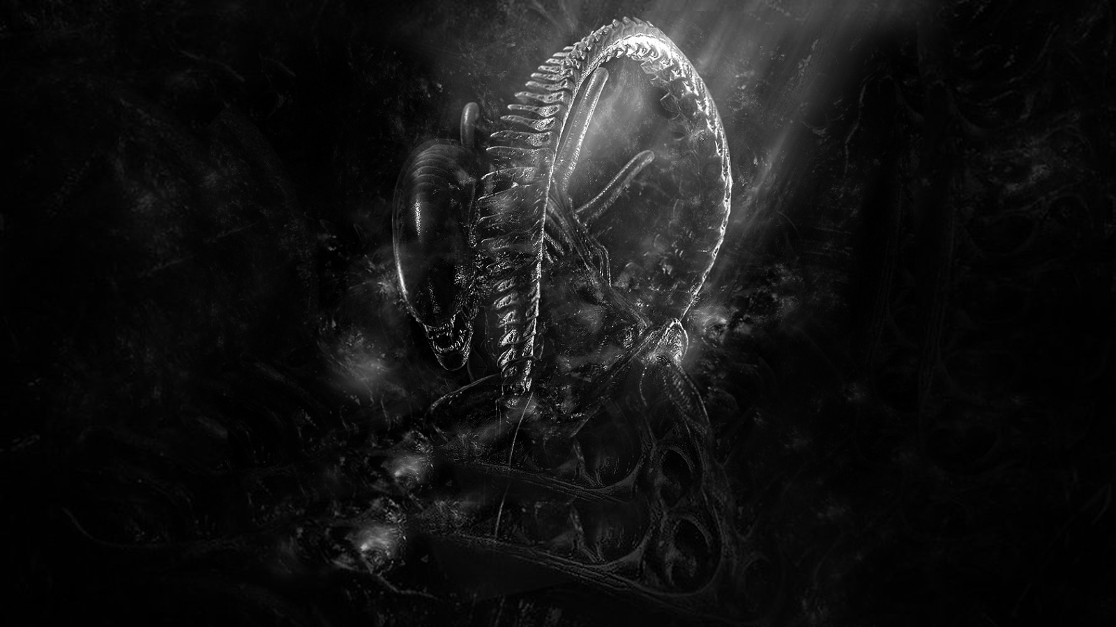 alien aliens images xenomorph wallpaper 1600x900 hd