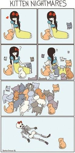 cats&cats&cats