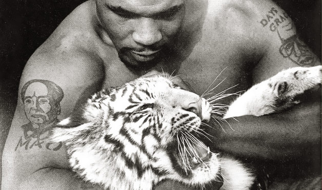 Celebs With Animals Images Mike Tyson And Snow Tiger Wallpaper Background Photos