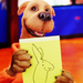 scooby doo icons - scooby-doo icon