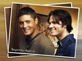 ♥ SUPERNATURAL ♥ - supernatural wallpaper
