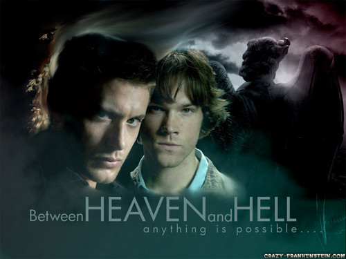 supernatural fondo de pantalla with a portrait titled ♥ supernatural ♥