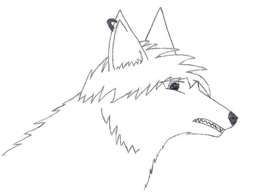 Anime serigala, wolf