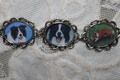 BORDER COLLIE dog pictures bracelet