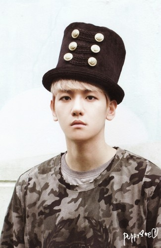 Baekhyun ~ 'Growl' - Baek Hyun Photo (35221127) - Fanpop