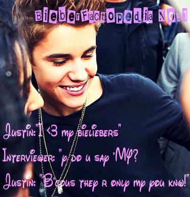 Bieber Factopedia