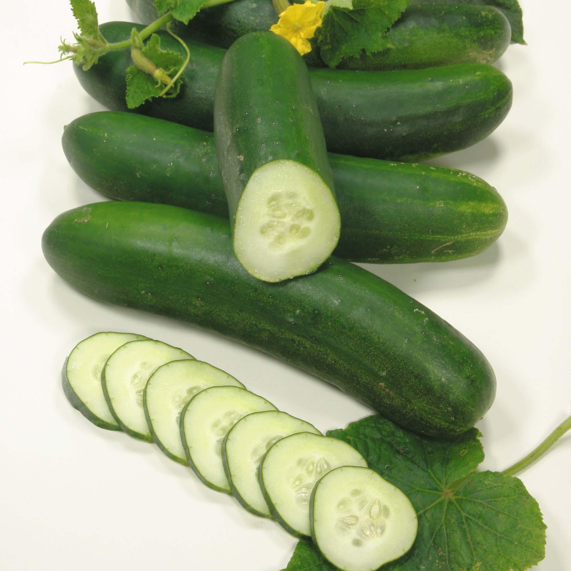Baby Food Zucchini Slice
