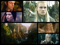 Elves of Middle-earth - lord-of-the-rings fan art