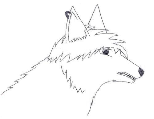 Emo lobo
