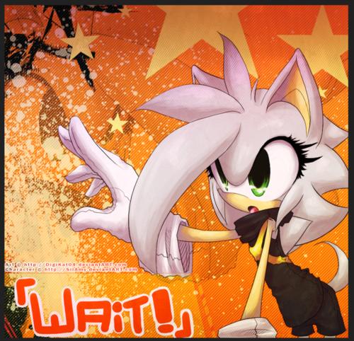 Flame The Hedgehog.