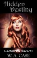 HIDDEN DESTINY - romance-novels photo