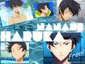 Haruka Nanase!<3
