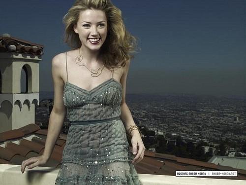 Hollywood Life (2008)