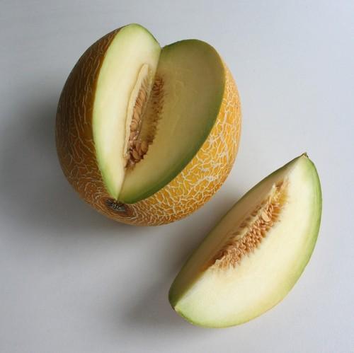 Honeydew Melon ♡