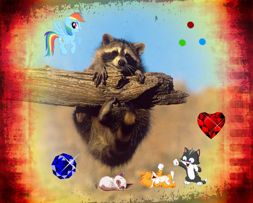 Jazzy Raccoon
