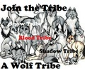 Join the Tribe, A Wolf Tribe - wolves photo