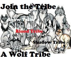 sertai the Tribe, A serigala, wolf Tribe