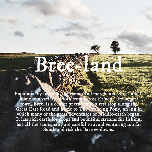 J.R.R. Tolkien wallpaper probably containing a grainfield titled Bree-Land