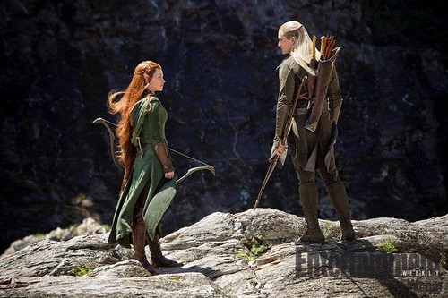 Legolas and Tauriel in The Hobbit: Desolation of Smaug