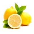 Lemon ♡
