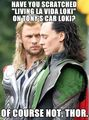 Loki spam 'n stuff.  - haremaster99 photo