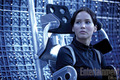 New Official 'Catching Fire' movie still - katniss-everdeen photo