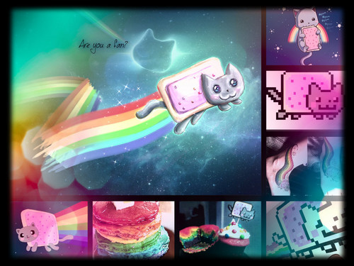 Nyan Cat দেওয়ালপত্র possibly containing a stained glass window and জীবন্ত titled Nyan cat অনুরাগী collage!