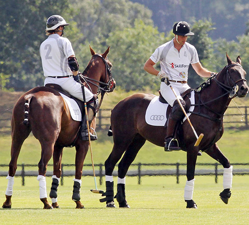 Prince William: Polo with Harry After Registering George's Birth!