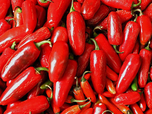 Colors Images Red Hot Chilli Wallpaper And Background Photos