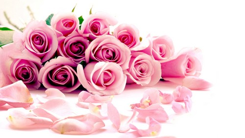 bunga wallpaper containing a bouquet, a rose, and a rose titled mawar